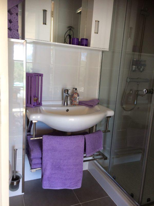 badkamer met douche en wc